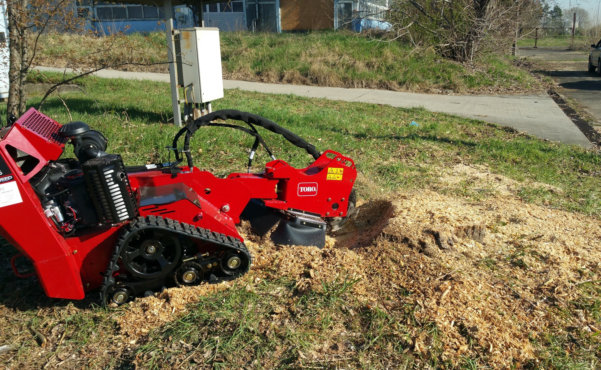 stump grinding near Edgewater florida