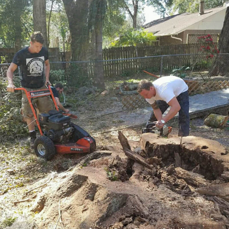 low-cost-stump-grinding-at-work-daytona-beach-florida