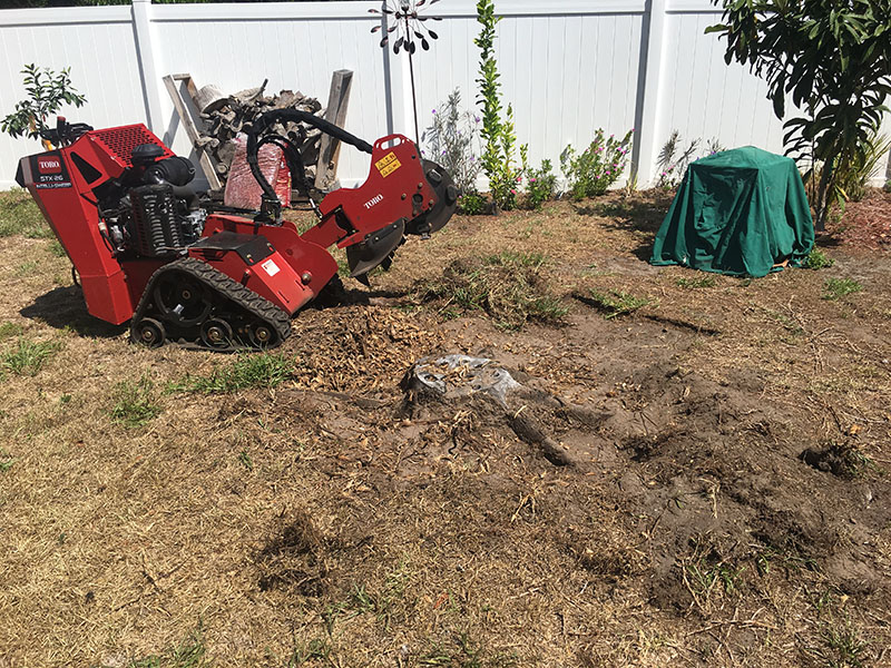 stump grinding port orange florida